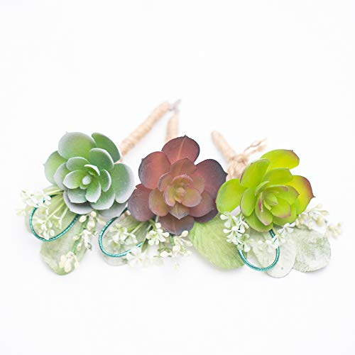 Richland Delford Succulent Boutonniere Set of 6]()