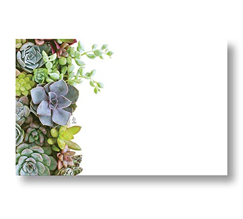 Succulent Garden Floral Enclosure Cards, Pack of 50