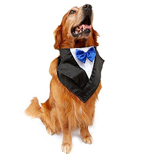 SGODA Dog Wedding Tuxedo Large Dog Bandana with Blue Bow Tie