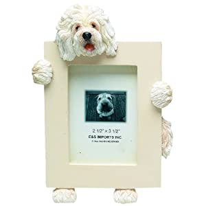 Old English Sheepdog Picture Frame Holds Your Favorite 2.5 by 3.5 Inch Photo, Hand Painted Realistic Looking Old English Sheepdog Stands 6 Inches Tall Holding Beautifully Crafted Frame, Unique and Special Old English Sheepdog Gifts for Old English Sheepdog Owners 48