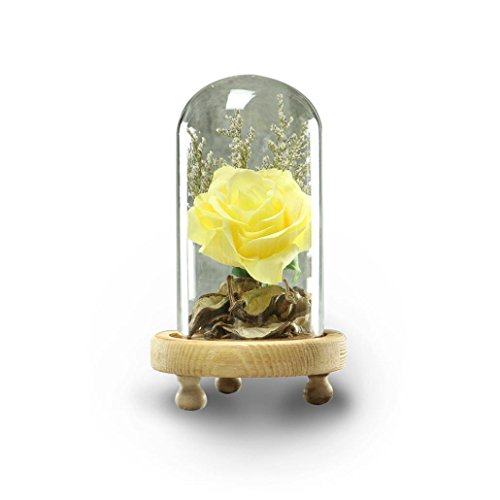 Glass Yellow Flower (Yeefant Micro Landscape Decoration, Romantic Roses in a Glass Dome on Wooden Base with Light for Birthday Gift Bedroom Livingroom Decor,4x4x4.3 Inch (Yellow))