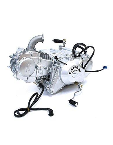 Lifan - Motor semiautomático para mini moto (125 cc): Amazon.es: Coche y moto