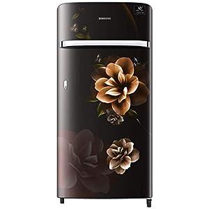 Samsung 198 L 4 Star Inverter Direct-Cool Single Door Refrigerator (RR21T2G2XCB/HL, Camellia Black)