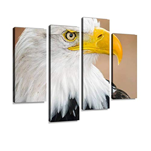 Canvas Wall Art Painting Pictures Bald Eagle Portrait Modern Artwork Framed Posters for Living Room Ready to Hang Home Decor - Bald Eagle Portrait