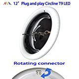 NYLL - 12 Inch/ 12' Plug & Play Circline LED - Daylight (6000K) Circline T9 LED Lamp Directly Relamp& Replace 32 Watt 12' Fluorescent Bulb FC12T9 (without Rewiring or Modification) - Ballast Required!