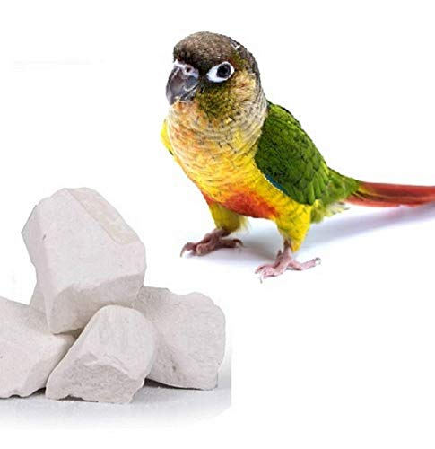 Dhavesai Natural Mineral Block for Birds (250 Grams)