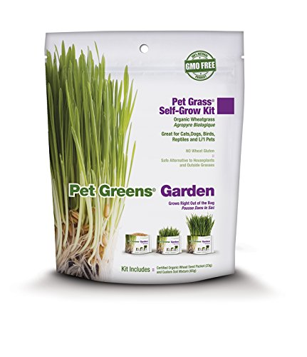 Bell Rock Growers Pet Greens Pet Grass ()