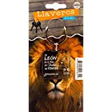 Amazon.com : Llavero Biblico Surf (Spanish Keytag with Bible ...