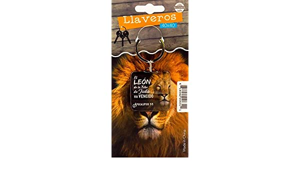 Amazon.com : Llavero Biblico (Spanish Keytag with Bible ...