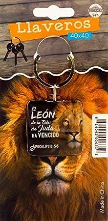 Amazon.com : Llavero Biblico (Spanish Keytag with Bible ...