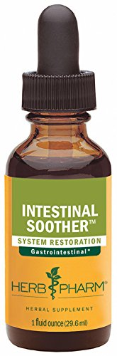 Digestion Soother - Herb Pharm Intestinal Soother Herbal Formula with Turmeric Extract - 1 Ounce