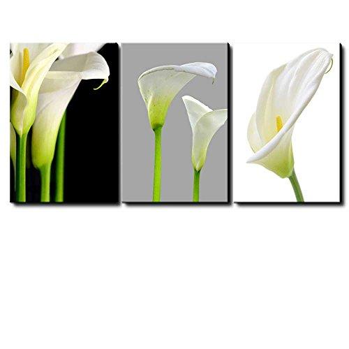 3 Panel White Calla Lillies Flowers x 3 Panels