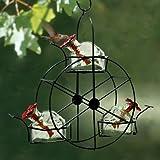 Parasol Ferris Wheel Hummingbird Feeder, Clear, 10.5 oz. For Sale