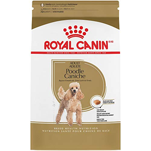 Royal Canin Breed Health Nutrition Poodle Adult Dry Dog Food, 10-Pound