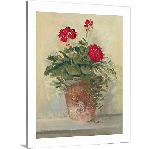 Potted Geraniums II Canvas Wall Art Print, 16