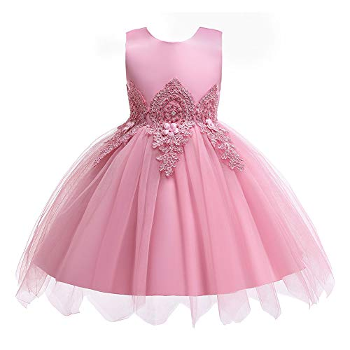 HUAANIUE Baby Toddler Girls Wedding Pageant Dresses Birthday Party Dress Pink 2-3 T (Dresses For Toddler Girls Wedding)