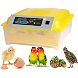 Kemanner Automatic 48 Digital Clear Egg Incubator Hatcher Egg Turning Temperature Control 80W US Plug (48egg)