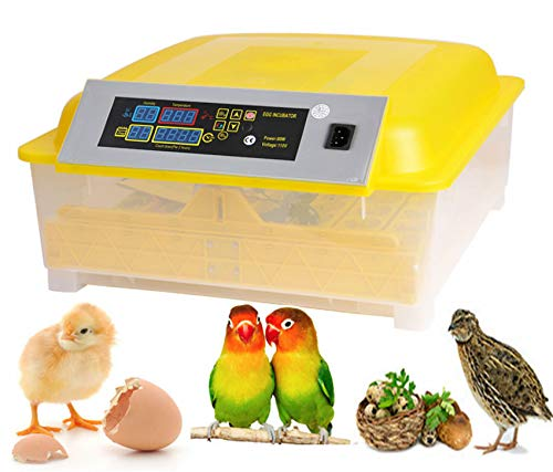 Kemanner Automatic 48 Digital Clear Egg Incubator Hatcher Egg Turning Temperature Control 80W US Plug 48eggs