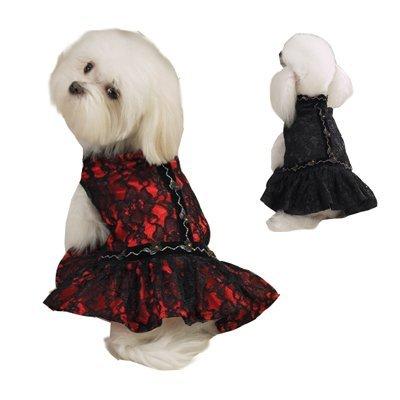 Zack & Zoey Lace Flamenco Dress - Black - Size XS ()