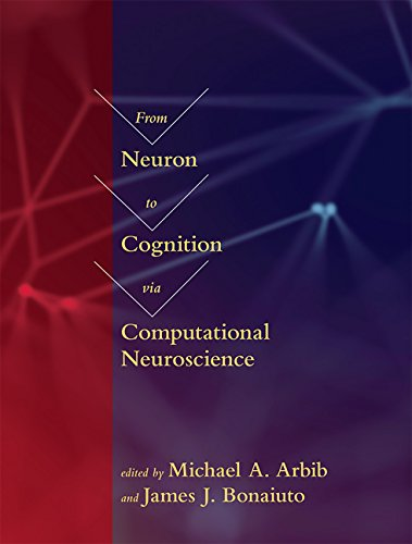 From Neuron to Cognition via Computational Neuroscience (Computational Neuroscience Series) (Jonathan P Lewis)