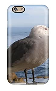 GnDGDNp1684fmAti Case Cover Monterey Gull S Birds Beach Seagull Animal Bird Iphone 6 Protective Case