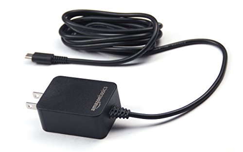 AmazonBasics-Single-Voltage-AC-Charger-for-Nintendo-Switch-does-not-support-TV-mode-Black