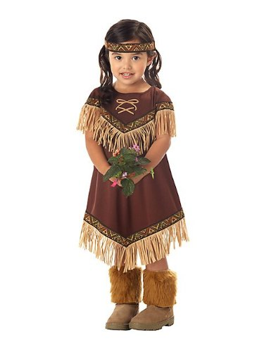 California Costumes Lil' Indian Princess Toddler Costume-