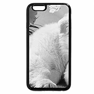 iPhone 6S Plus Case, iPhone 6 Plus Case (Black & White) - cuddly friends