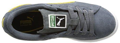 Puma El Ace 3 Canvas Ante Zapatillas