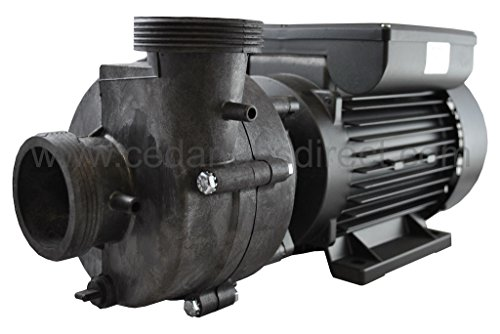 2 HP Spa Pump - UltraJet Ultimax 220-240 VAC 50 Hz - Europe (Ultimax Pump Spa)