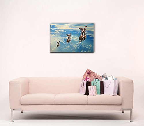 Funny Flying Animals Three Dogs Flying in a Line in The Clear Sky Nursery Wall Kids