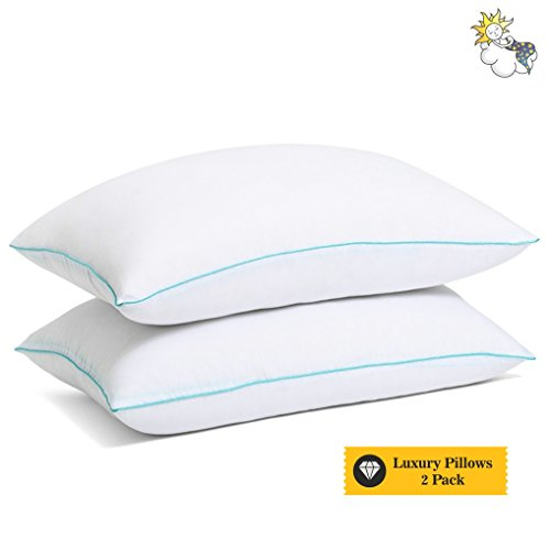 Pillow Hypoallergenic - Pillows For Sleeping - Queen Standard Bed Pillows Cotton - Best Standard Sleeping Pillow - Down Alternative Hotel Pillows For Sleeping - Medium Soft Firm Pillow 2 Pack