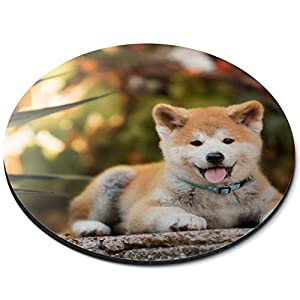 Round Mouse Mat - Japanese Akita Inu Puppy Dog Office Gift - RM15710 3