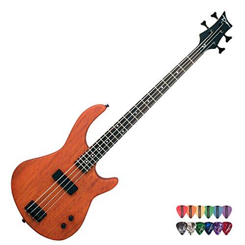 dean 12 string bass - 5