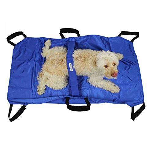 - Walkin' Transport Stretcher for Dogs and Other Animals with Safety Strap to Keep Your Pet Secure