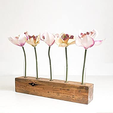 Wood Meets Color Vase Set, Home Decor Display, Including Wood base, 5 Tubes and 5 Artificial Flowers