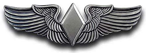 (WASP Wing Women Air Force Service Pilot Badge Breast Pin)