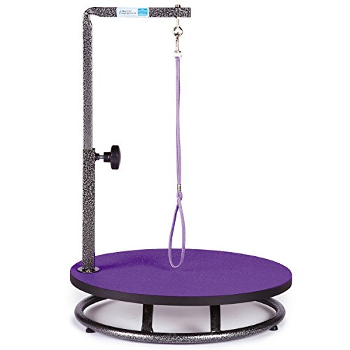 Master Equipment Small Pet Grooming Table, Purple ()