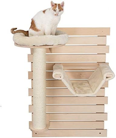 PaylesswithSS - Hamaca para Gato montado en la Pared: Amazon.es: Productos para mascotas
