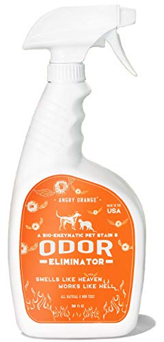 Angry Orange - Best Enzyme Pet Odor Eliminator and Stain Remover to Destroy Cat and Dog Urine 32oz Spray Bottle - New Fresh Citrus Scent