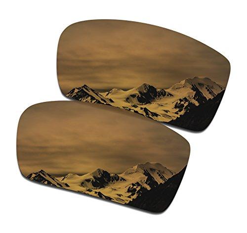 SmartVLT Men's Bronze Gold Replacement Lenses for Oakley Gascan Sunglass (Bronze Gascan Lenses Oakley)