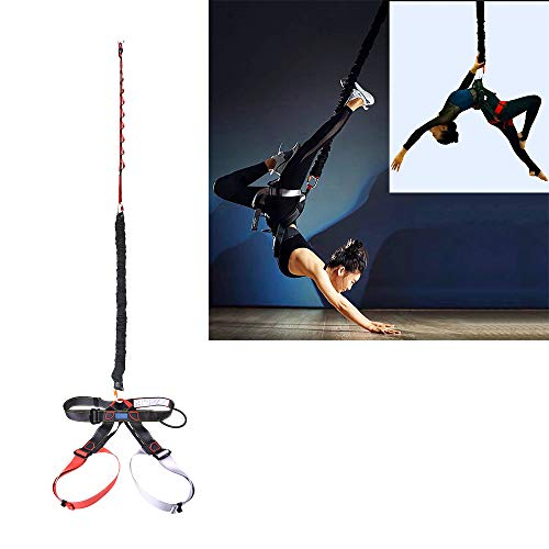 DASKING Heavy Bungee Cord Resistance Belt for Home Gym Yoga Bungee Rope Gravity Bungee 4D Training Pro Tool Ideal for Home Gym Studio (Weight Class -3)