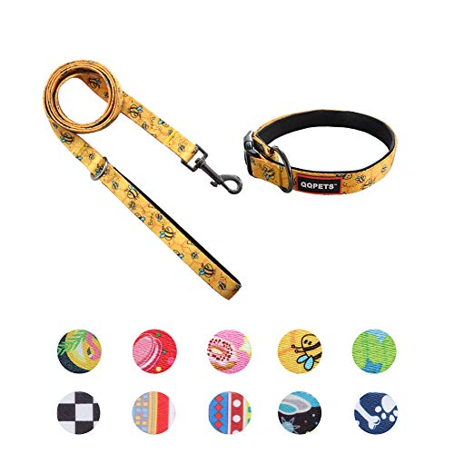 QQPETS Puppy Collar and Leash Set Girl Boy Dog Personalized for sale  Delivered anywhere in USA