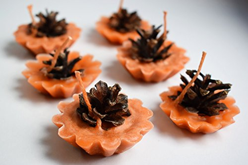 Set of Pine cone Fire starters - fireplace starter - rustic wedding favor - pine cone in wax - home and garden decor - Eco friendly