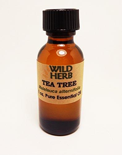 Bulk Tea Tree Essential Oil Organic (8 - Priority Mail To Australia