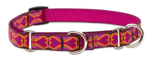 "LupinePet Originals 3/4"" Heart 2 Heart 10-14"" Martingale Collar for Small Dogs"