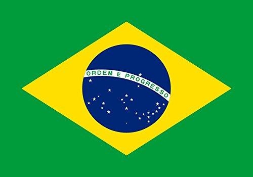 Pegatina 2 adhesivos de vinilo para el coche o la moto  Brasil  Bandera Sticker ca. 8x5 cm