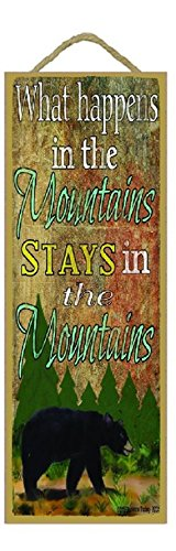 What Happens in the Mountains Stays in Mountains Black Bear 15