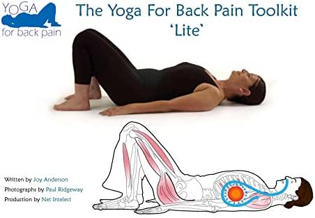 The Yoga for Back Pain Toolkit 'Lite'