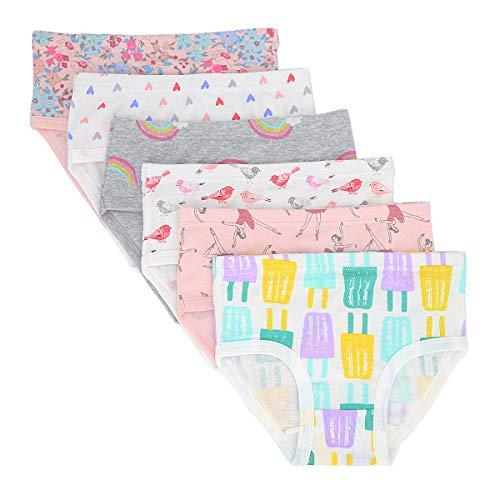 Toddler Little Girls' Briefs Panties Kids Cotton Underwear Set 6 Pack (4-5 Years, Style3) -